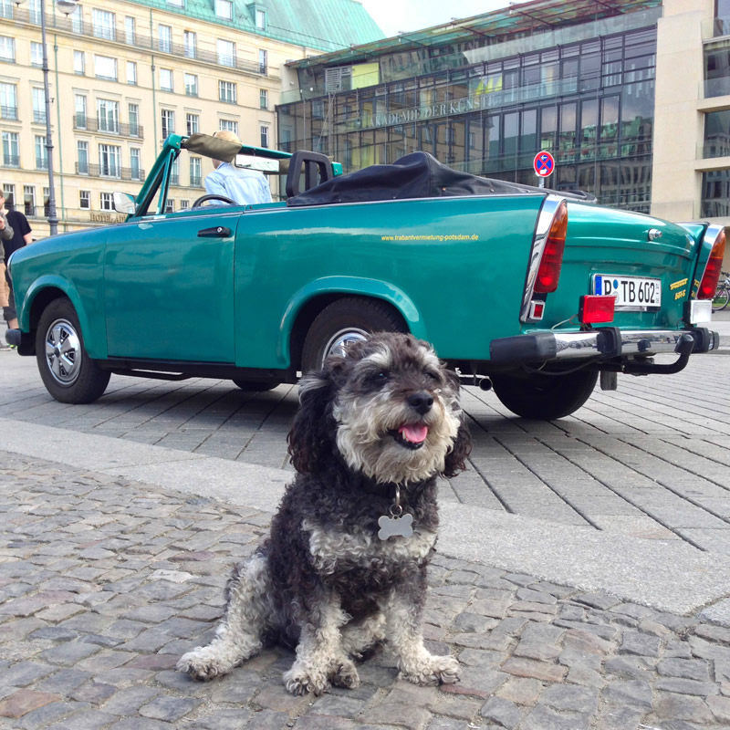 Willie with the Classic East German Car - The Trabi in Berlin Germany