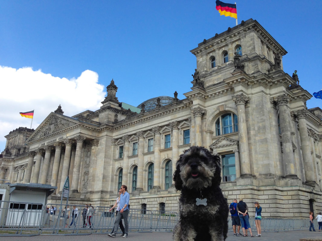 Willie at the Reichstag Building in Berlin Germany