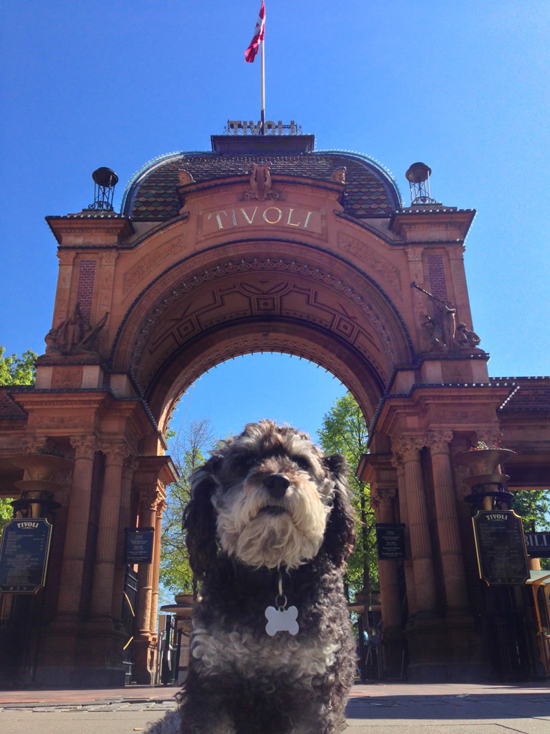 Willie at Tivoli Gardens in Copenhagen Denmark