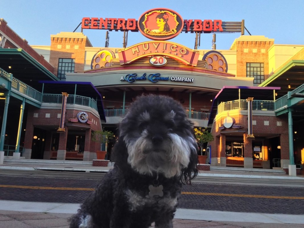 Willie outside the theater in Ybor City Florida