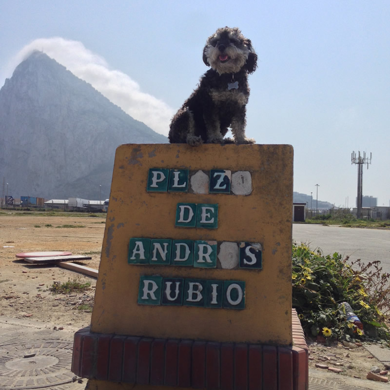 Willie at The Rock of Gibraltar