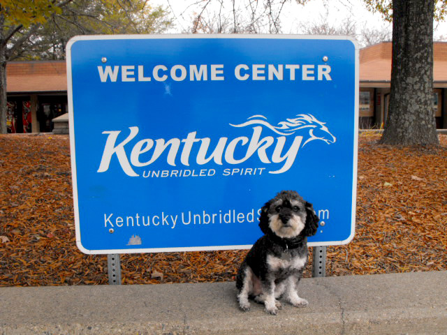 Willie at the Kentucky Welcome Center