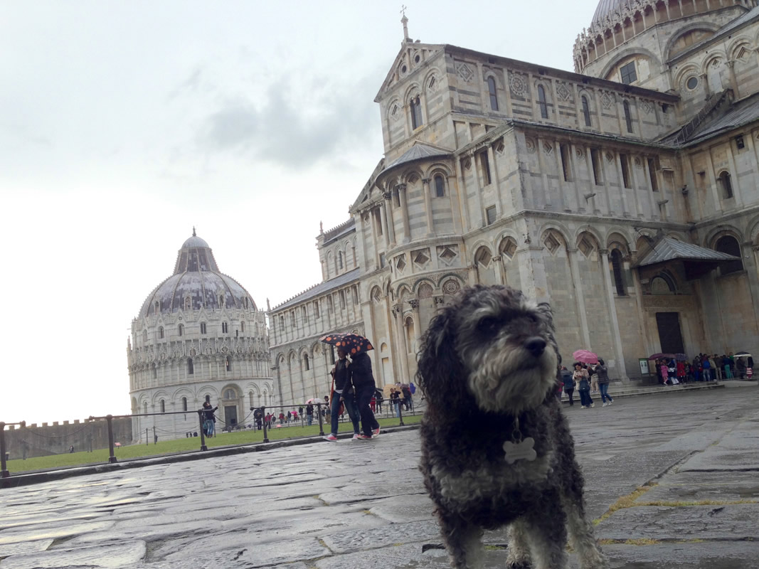 Willie at the Pisa Cathedral in Italy