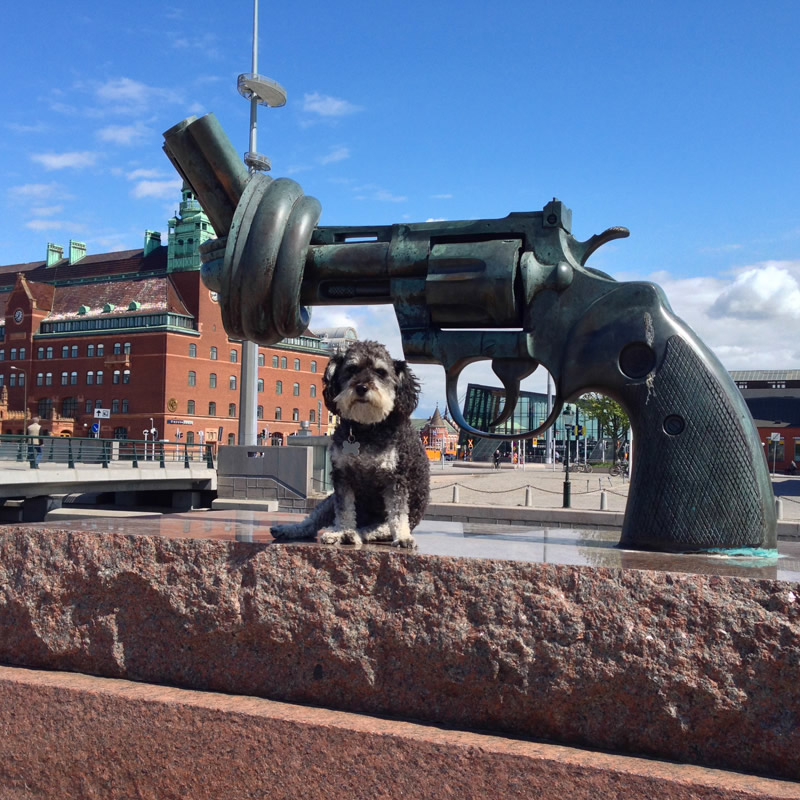 Willie poses with The Knotted Gun in Malmo Sweden