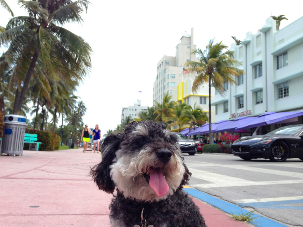 Ocean Drive South Beach Miami Florida