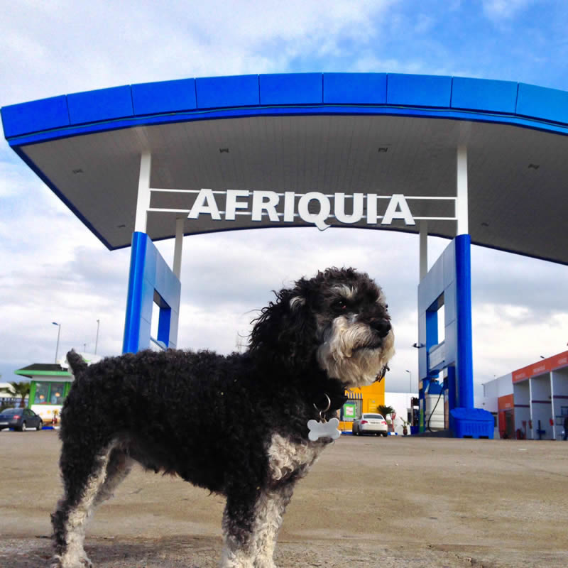 Willie stops for gas at Afriquia in Morocco