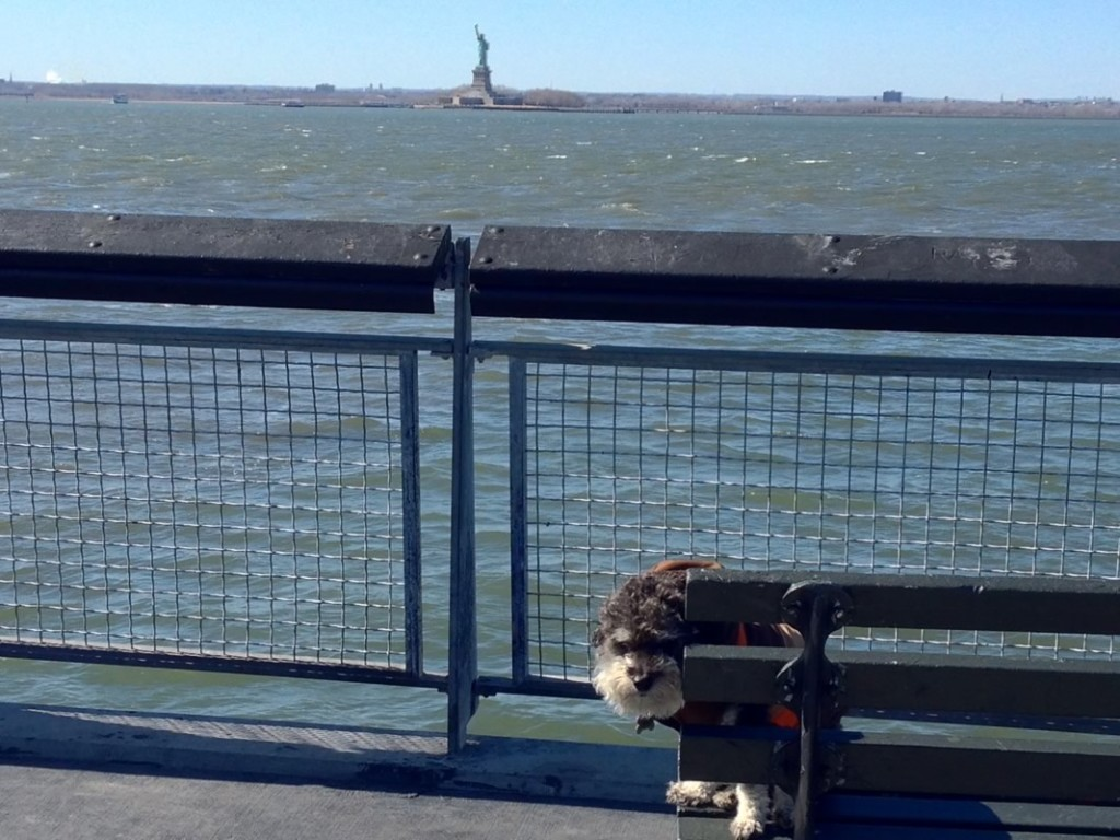Willie at Staten Island with the Statue of Liberty