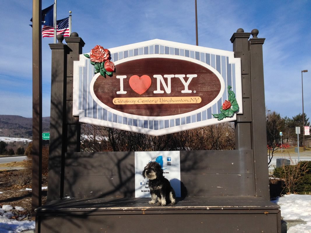 Willie at the I love New York sign just outside of the Poconos