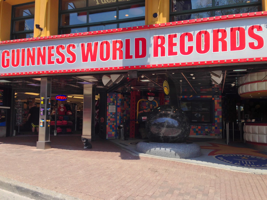 Willie at the Guiness World Records Clifton Hill Niagara Falls Canada