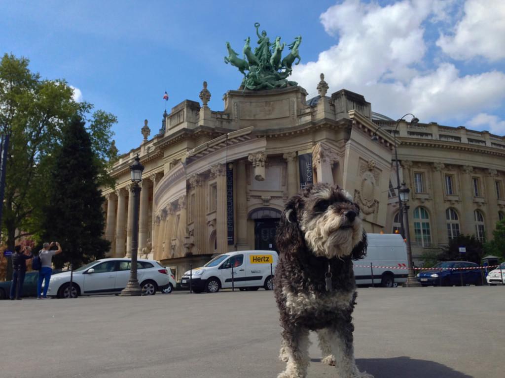 Willie at The Grand Palais des Champs-Élysées in Paris France