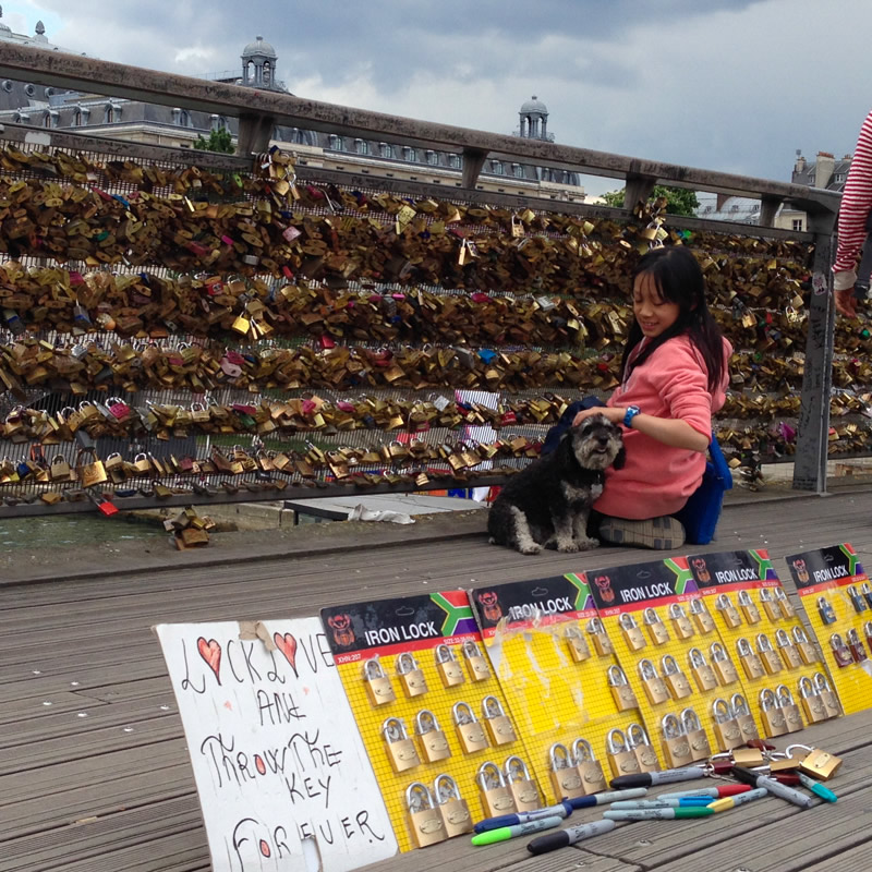 Willie stops to admire the Love locks on the bridge in Paris France
