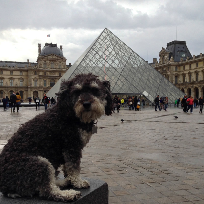 Willie outside the Louvre in Paris France