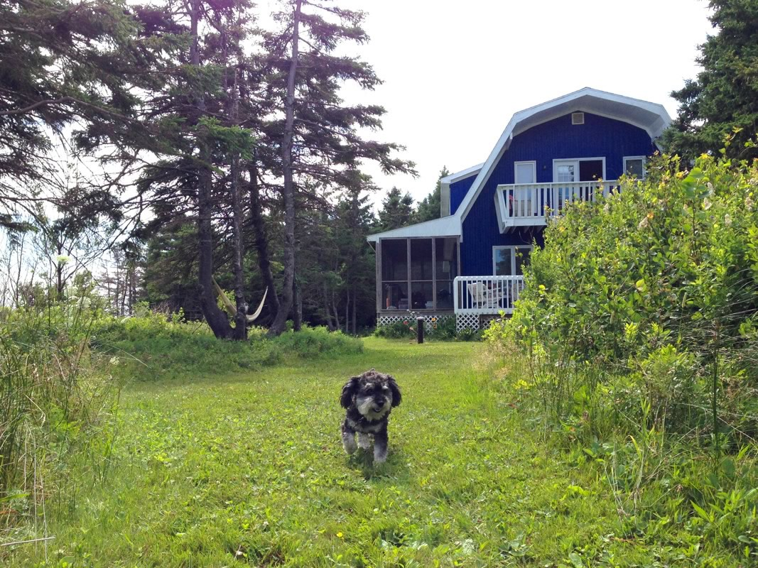 At the cottage in Prince Edward Island