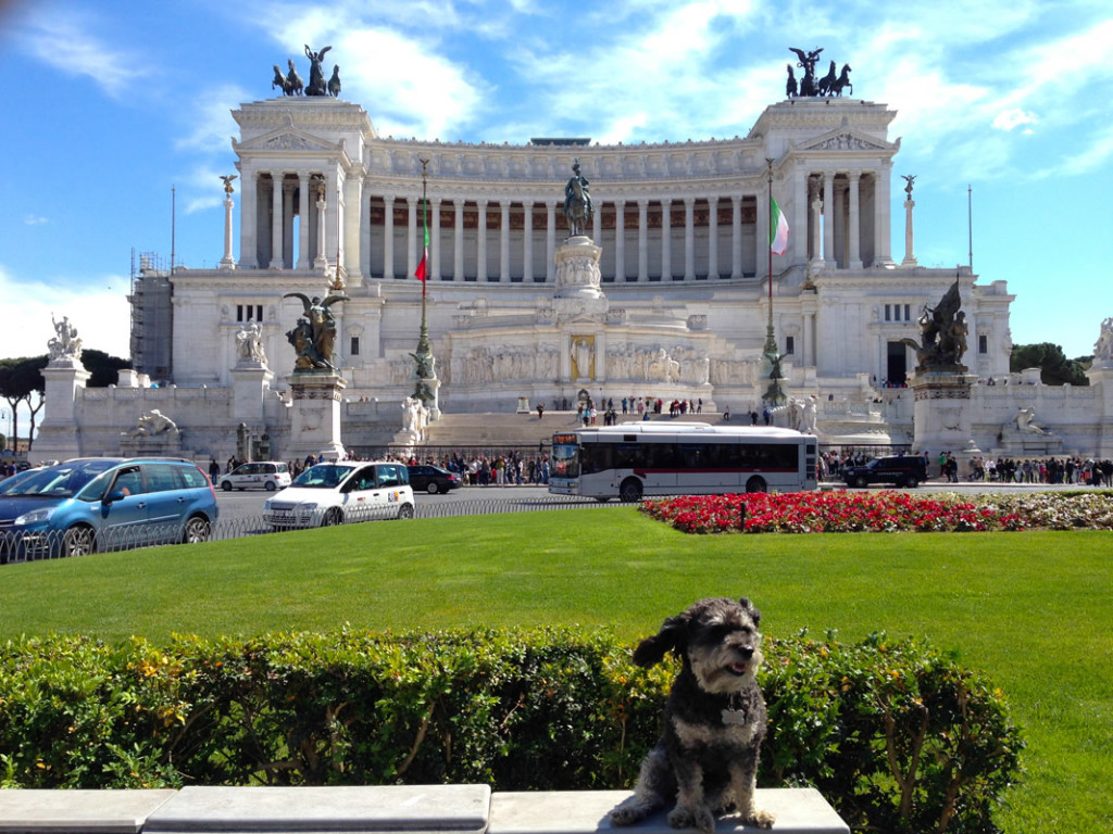 Willie with Piazza Venezia in the background in Rome Italy