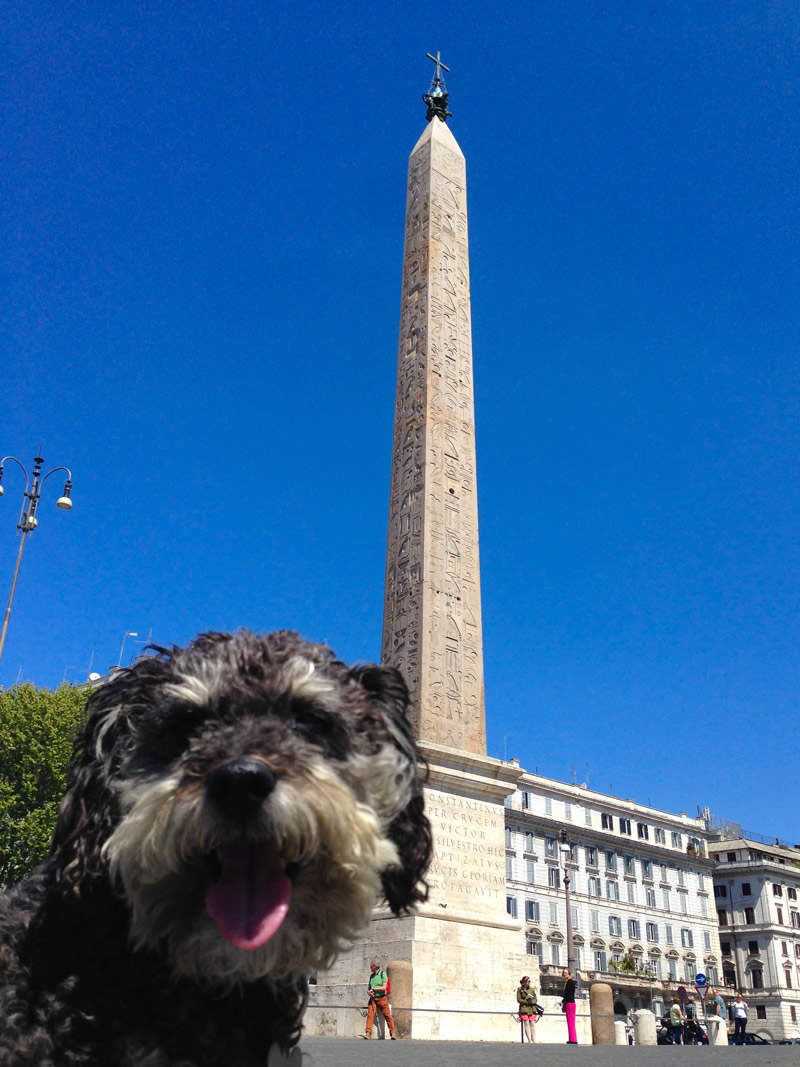 Willie in front of a monument in Rome Italy