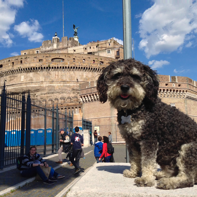 Willie outside of Castel Sant'Angelo in Rome Italy