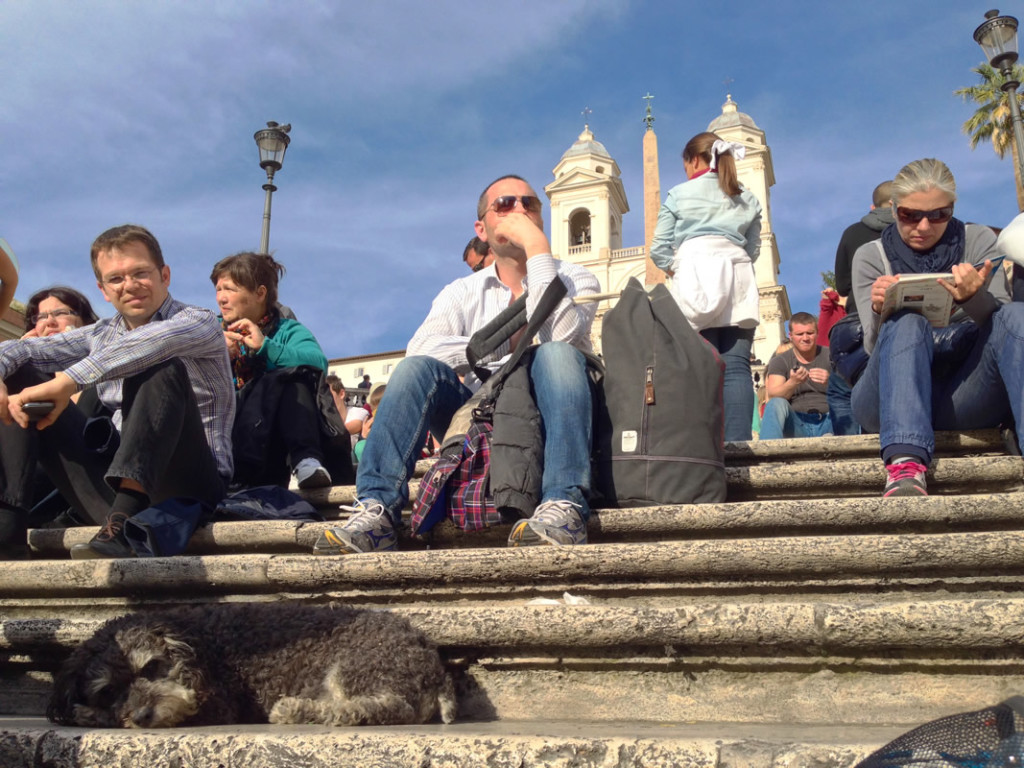 Willie takes a nap on the Spanish Steps in Rome Italy