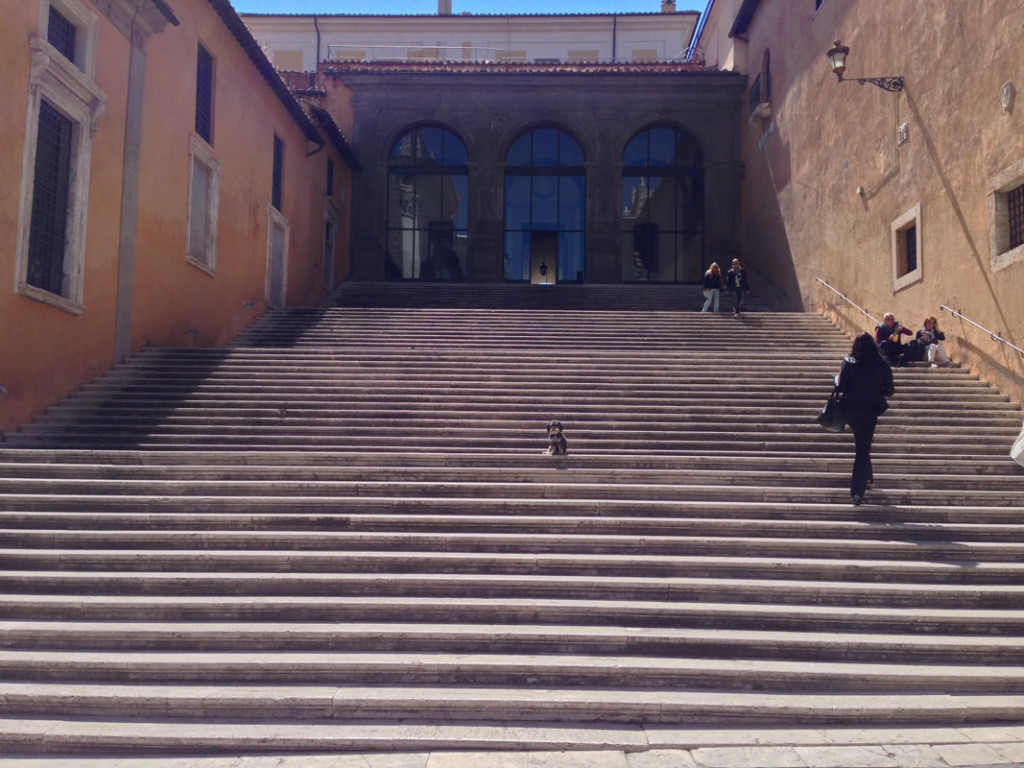 Willie sitting on the steps of Piazza del Campidoglio in Rome Italy