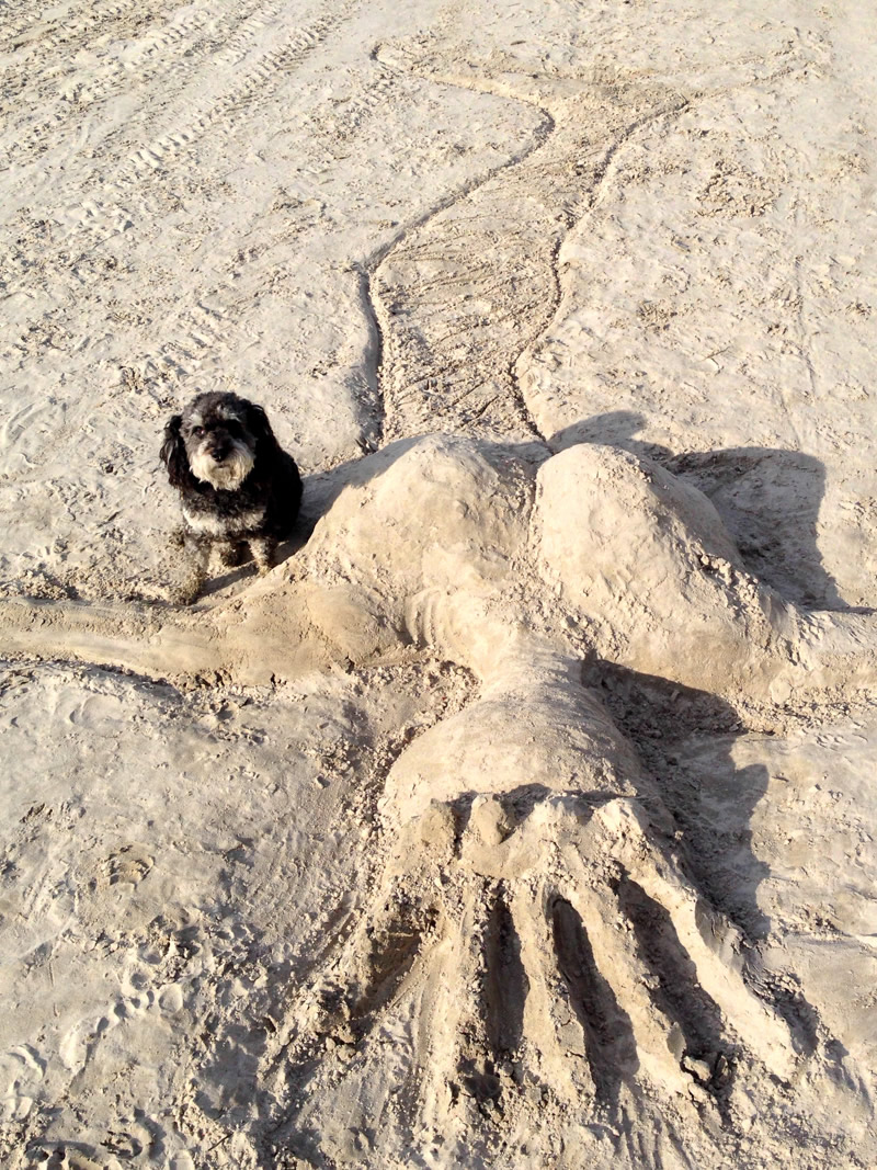 Sand mermaid on Wasaga Beach