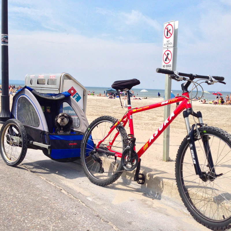 Bike ride down the strip of Wasaga Beach