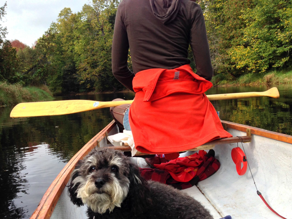 Paddling down Beaver River with Charlie and Victoria