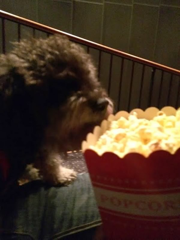 enjoying some popcorn