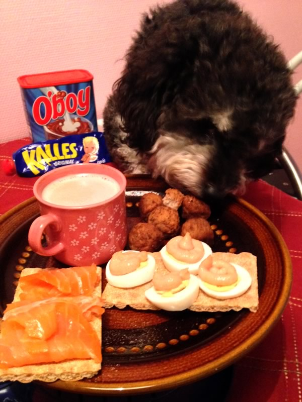 Willie enjoys swedish meatballs, smoked salmon, kavier paste and OBOY to survive the cold Swedish winter