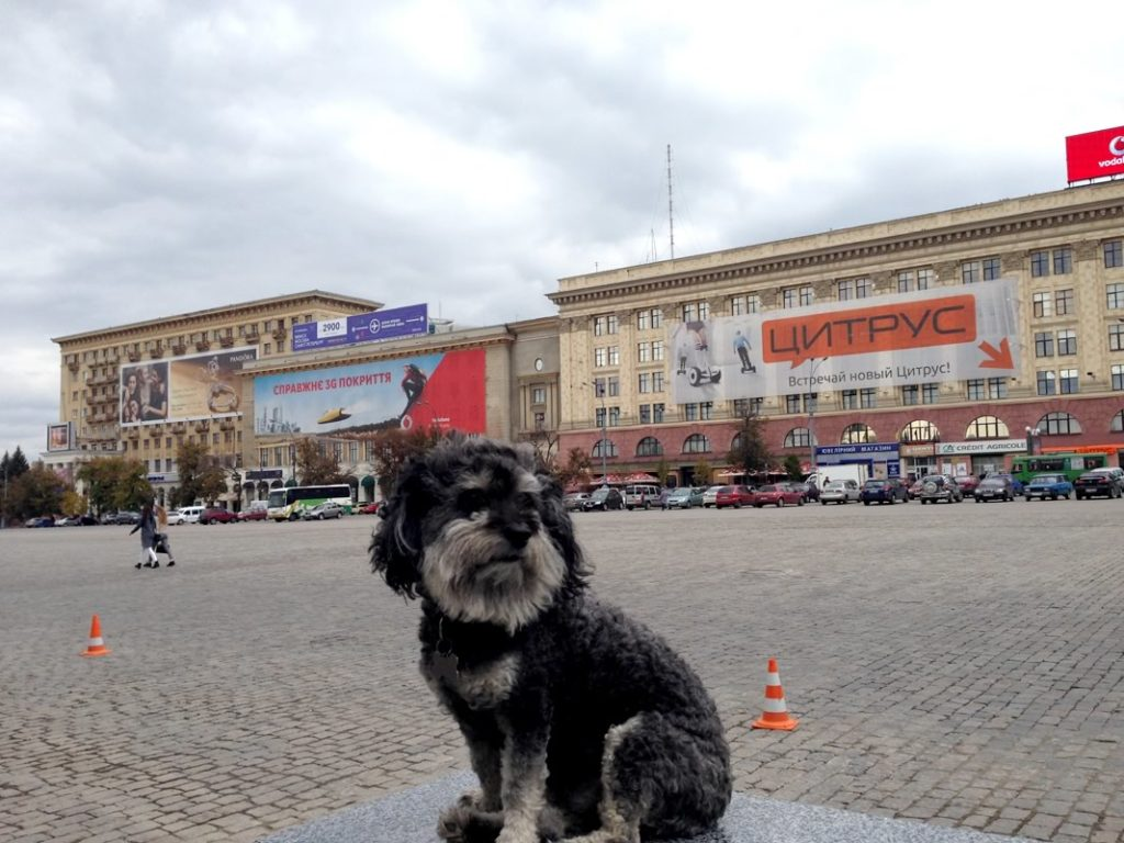willie in kharkiv square