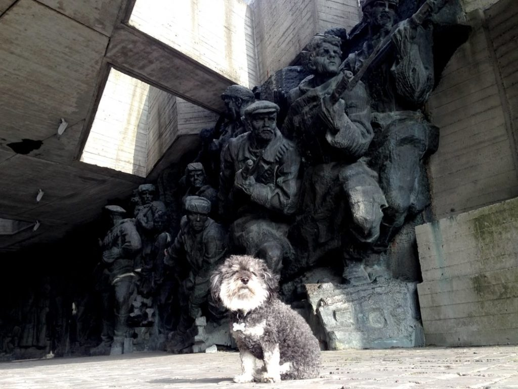 willie visits a kiev monument